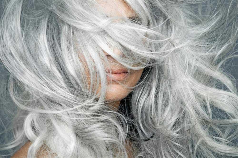 موخوره در موی سفید