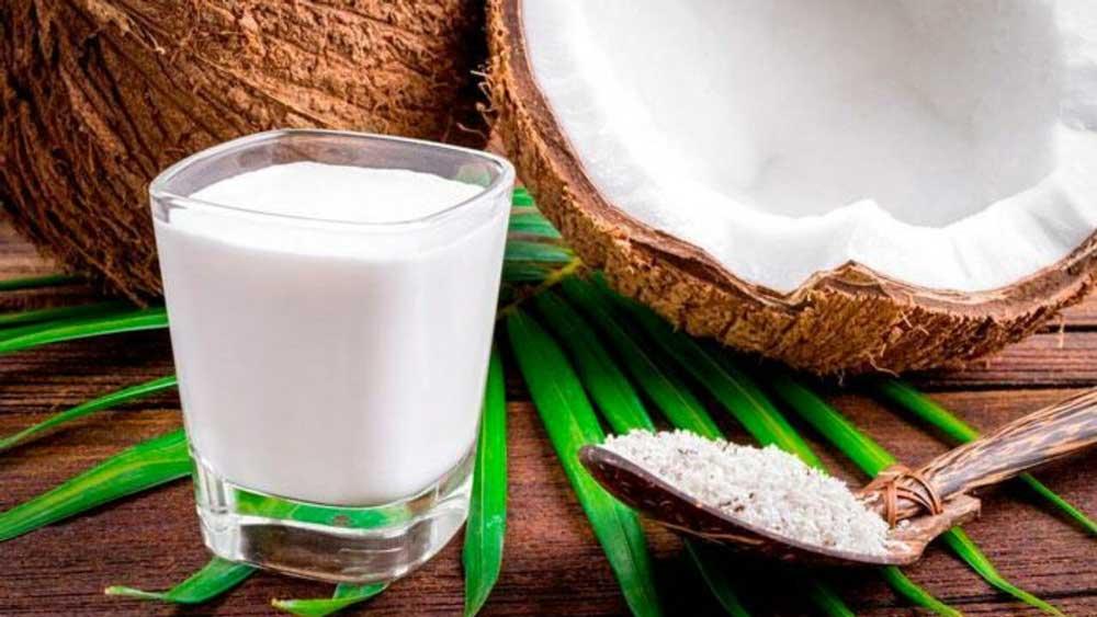 شیر نارگیل